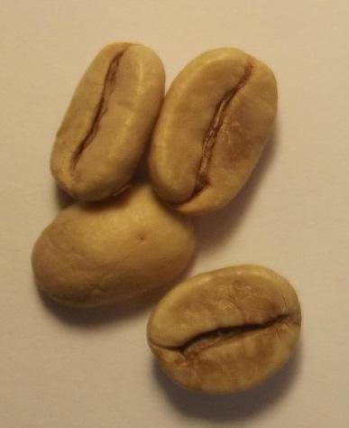 coffee-bean02