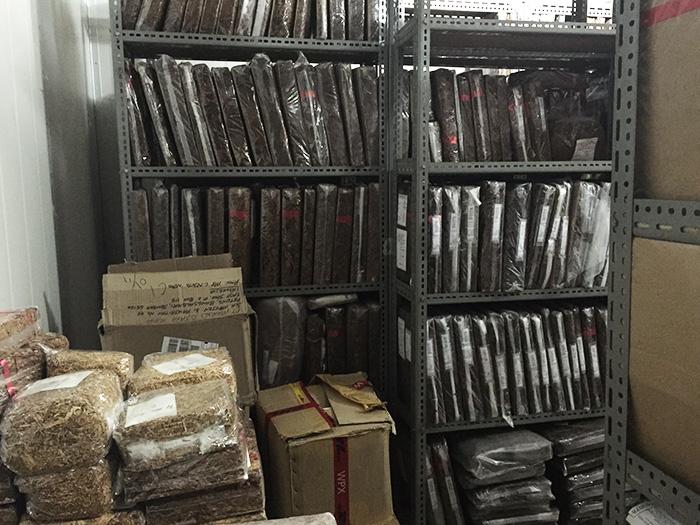 インドネシアにあるタバコ研究所へ訪問しました