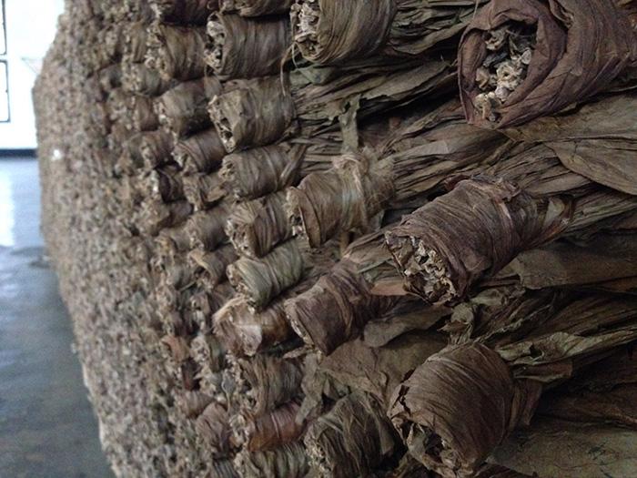 葉巻(プレミアムシガー・ドライシガー・シガリロ)に使用するタバコ葉の仕分けと熟成