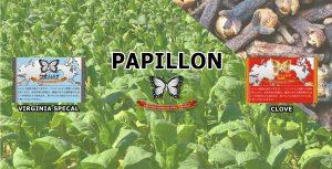 『パピヨン・クローブ』『パピヨン・バージニアスペシャル』販売開始のお知らせ。